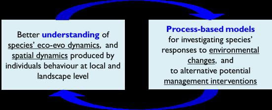 ProcessBasedModels